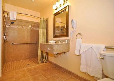 bathroom-modifications-gallery-2